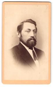 Fotografie Gebr. Staegerl, Iglau, Portrait bürgerlicher Herr im Anzug mit Krawatte u. Vollbart