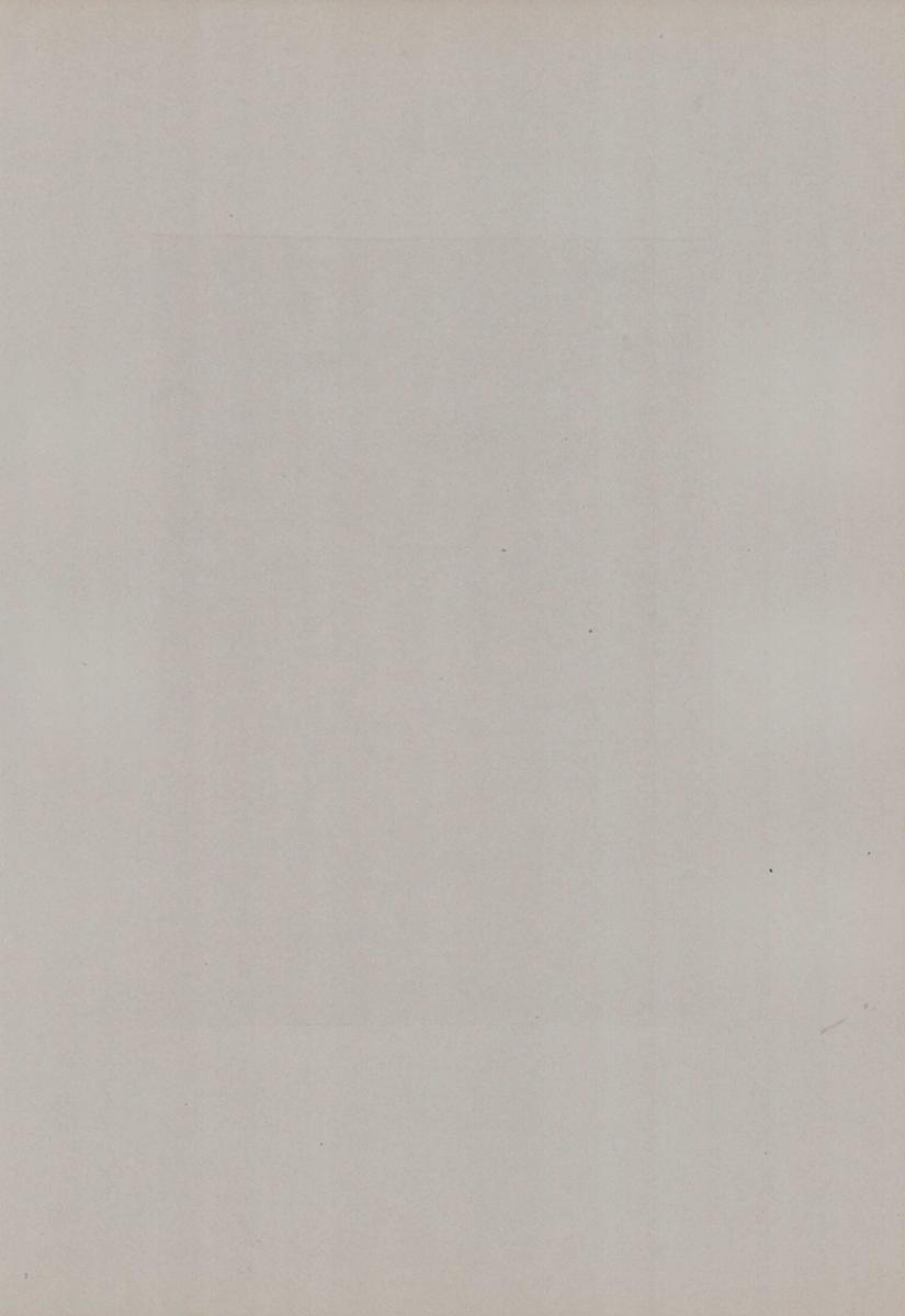 Fotografie Fotograf unbekannt, Ansicht Vatikanstadt, Skulptur Gladiator im Vatikanmuseum, Grossformat 31 x 42cm 1