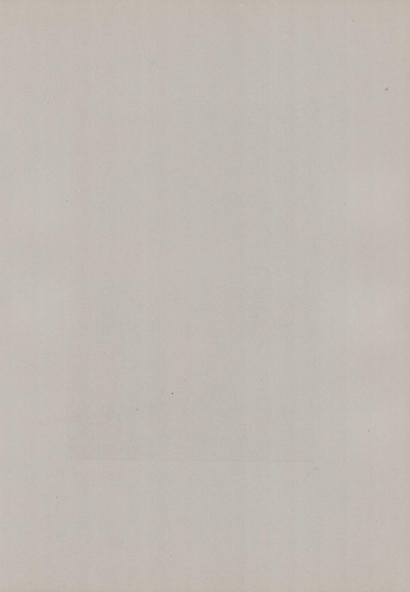 Fotografie Fotograf unbekannt, Ansicht Wien, Wiener flanieren am Stephansdom, Grossformat 31 x 42cm 1