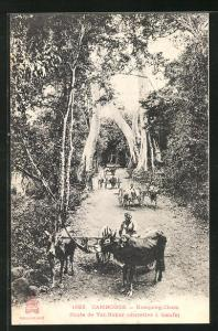 AK Kompong-Cham, Route de Vat-Nokor