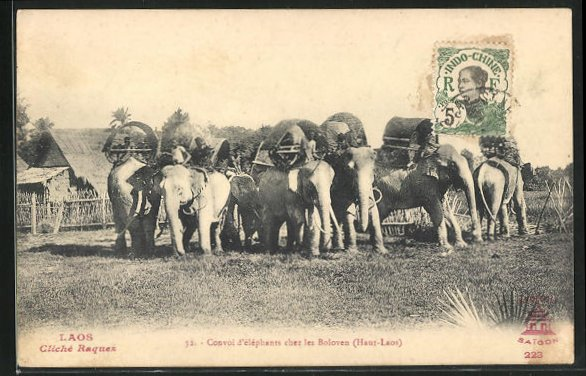 AK Laos, Convoi d`éléphants chez les Boloven 0