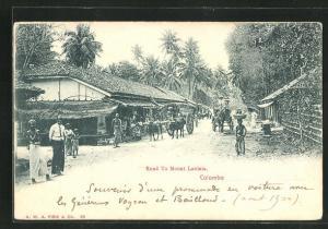 AK Colombo, Road to Mount Lavinia, Häuser und Büffelkarren