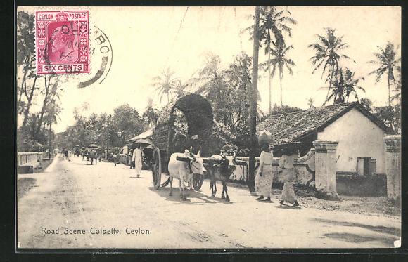 AK Colombo, Colpetty, Road Scene, Büffelkarren 0