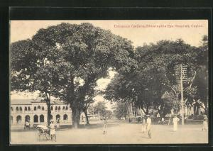 AK Colombo, Cinnamon Gardens, showing the Eye Hospital