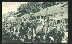 AK Kandy, Perahara, geschmückte Elefanten und Bevölkerung