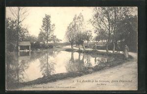 AK Dixmont, La Borde à la Gousse, La Mare