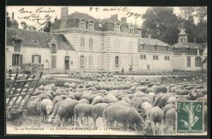 AK La Chapelle-sur-Oreuse, La Pommeraie, La Ferme