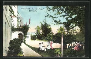 AK Bermuda, Winter at the Hamilton Hotel
