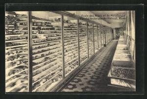 AK Mons, Ecole des Mines, Collection de mineralogie et paleontologie