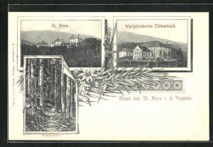 AK St. Anna, Waldpartie, Wallfahrtskirche Thierenbach, Gesamtansicht