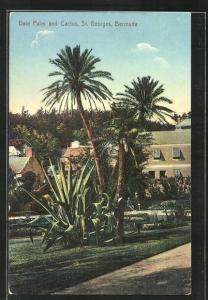 AK St. Georges / Bermuda, Date Palm and Cactus