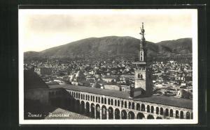 AK Damas, Panorama