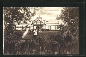 AK Durban, Gewächshaus im Botanischen Garten