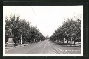 AK Melbourne, St. Kilda Road