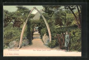 Künstler-AK Gibraltar, The Whale Jaw's Arch