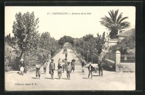 AK Castiglione, Avenue de la Mer