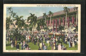 AK Miami, FL, Grandstand from the Paddock, Miami Jockey Club