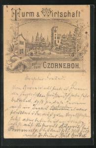 Vorläufer-Künstler-AK P. Eissner: Czorneboh, 1894, Turm & Wirtschaft, Ganzsache PP9 F240