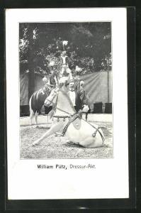 AK William Pütz, Dressur-Akt, Zirkuspferde