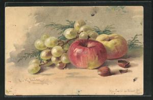 Künstler-AK Catharina Klein: Stilleben mit Weintrauben, Apfel und Nüssen