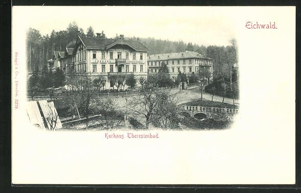 AK Eichwald, Ansicht vom Kur-Hotel Theresienbad 0