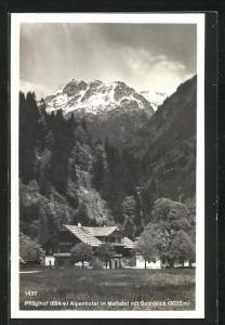 AK Alpenhotel Pflüglhof im Maltatal, Motiv mit Sonnblick