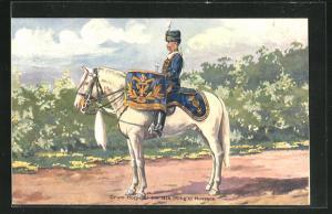 AK Drum Horse of the 14th King`s Hussars, Kesselpauker, Husar