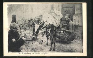 AK Pondichéry, Laitier Indigène, Inder melken ihre Kuh