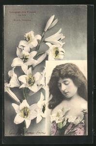 AK Langage des Fleurs, Le Lis - Majesté, Innocence, Blumensprache