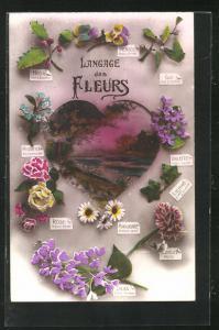 AK Langage des Fleurs, Blumensprache, Herz