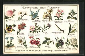 Präge-Lithographie Langage des Fleurs, Ecrire le nom sous la fleur qu`on désire, Blumensprache
