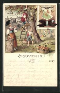 Lithographie Frauenfeld, Wappen Thurgovie, Apfelernte, Tracht