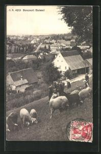 AK Boncourt, Ortsansicht von einer Anhöhe mit einer Herde Schafe und Hirten
