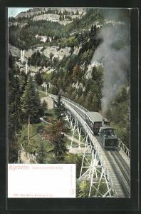 AK Rigibahn, Schnurrtobelbrücke