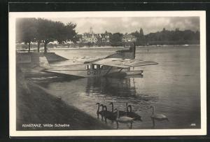 AK Konstanz / Bodensee, Wasserflugzeug am Ufer und wilde Schwäne