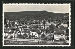 AK Delemont, Blick von der Bergwiese auf den Ort
