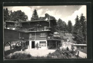 AK Braunwald, Hotel Alpina
