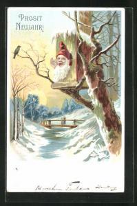 AK Zwerg steckt seinen Kopf aus dem Vogelhaus heraus, Prosit Neujahr
