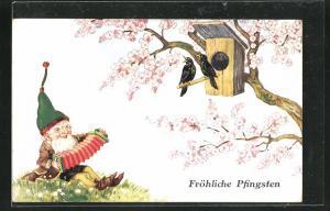 AK Zwerg musiziert gemeinsam mit den Vögeln im Baum, Fröhliche Pfingsten