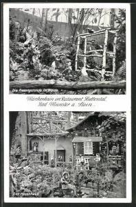 AK Bad Münster am Stein, Märchenhain im Restaurant Huttental, die Gesangsstunde im Walde, das Hexenhaus