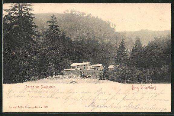 AK Bad Harzburg, Partie im Radautale 0