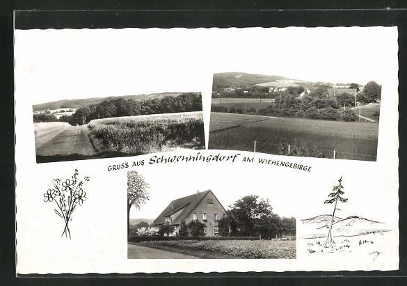 AK Schwenningdorf am Wiehengebirge, Privat-Pension Kipp, Ortspartien 0