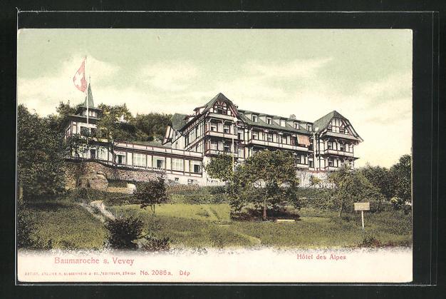 AK Baumaroche s. Vevey, Hôtel des Alpes 0