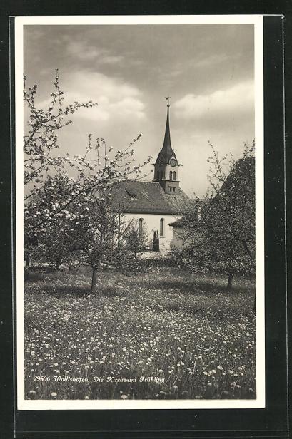 AK Wollishofen, Kirche im Frühling 0