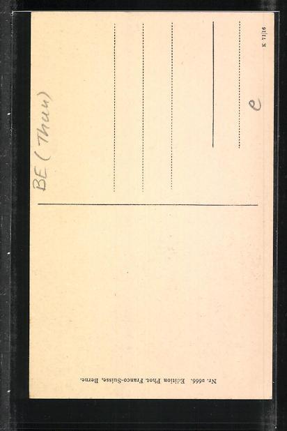 AK Thun, Rosengarten, Freienhofgasse 1