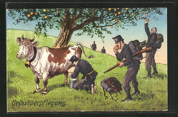 AK Selbstverpflegung, Schweizer Soldaten in Uniformen melken eine Kuh und pflücken Äpfel 0