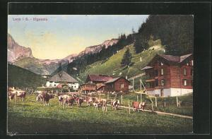 AK Lenk, Häuser der Ifigenalp und grasende Kühe