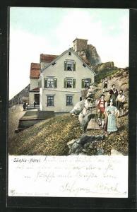 Künstler-AK Appenzell, Blick auf das Säntis-Hotel