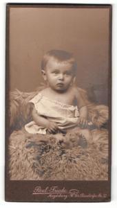 Fotografie Paul Friede, Magdeburg, Portrait bezauberndes Kleinkind auf Fell sitzend