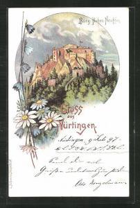 Lithographie Nürtingen, Burg Hohen-Neuffen